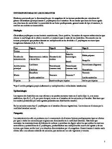 Enterotoxemia en rumiantes